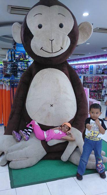 Naoki Kumiko monkey